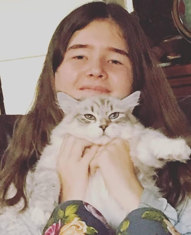 Robin Iz Tverskogo Knyazhestva - cute Neva masquerade cat - the best friend of children and funny claun of his new family