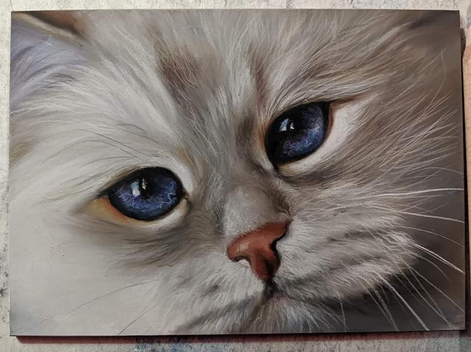 The amazing painting of blue-eyed Neva masquerade cat Lapushka Iz Tverskogo Knyazhestva